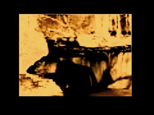 bill beamer -crais positionee retsar kline tug by jim leftwich