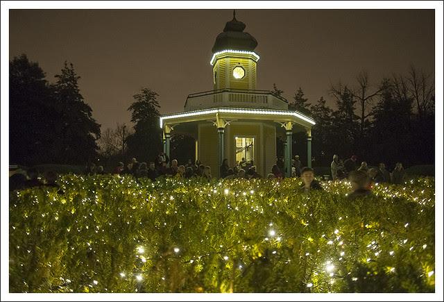 Garden Glow 2013-12-20 2 (Light Maze)