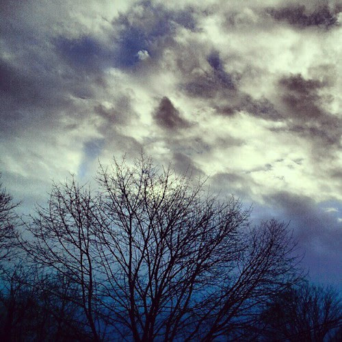 #morning #sky #newhampshire #stormy #tree #clouds