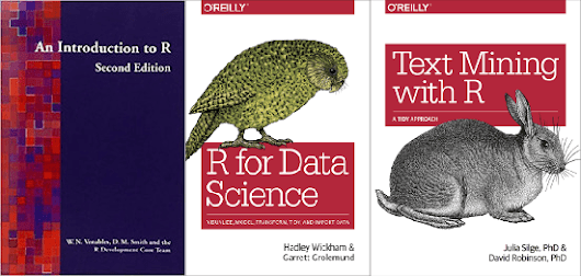 Grasp R Programming with Open-Source Books - OSS Blog