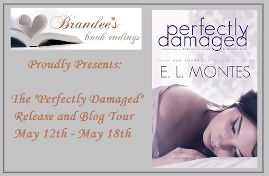 New Release: Perfectly Damaged by E.L. Montes