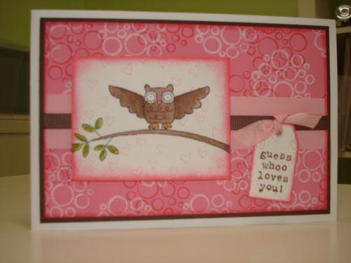 Owl pink circle circus