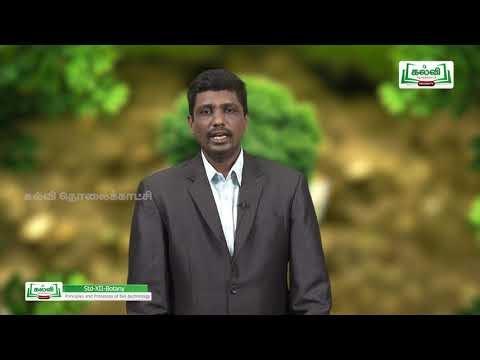 12th Botany உயிரிதொழில் நுட்பவியல் நெறிமுறைகளும் பாடம் 4 Kalvi TV