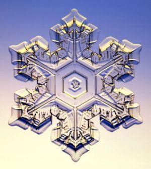 snowflakelarge