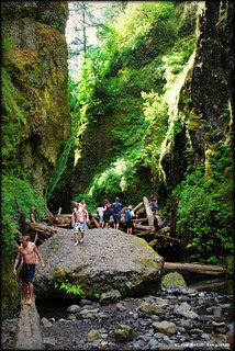 Hikers at the log jam - Oneonta Gorge