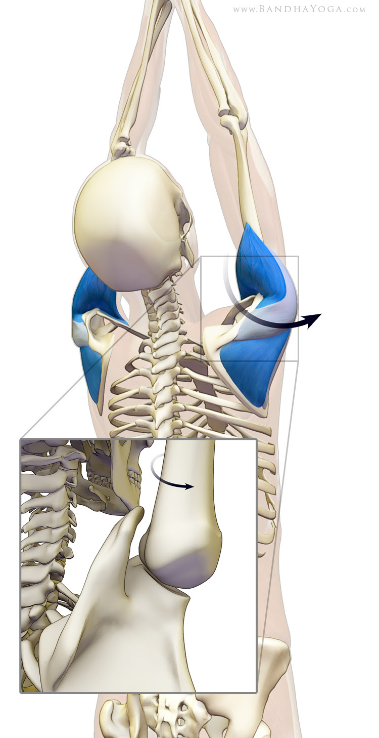 externally rotate the shoulders to avoid impingement