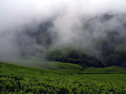 Meghamalai: The Hidden Paradise - Nativeplanet