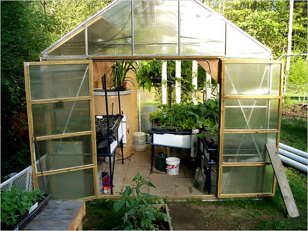 Greenhouse Aquaponics System Design