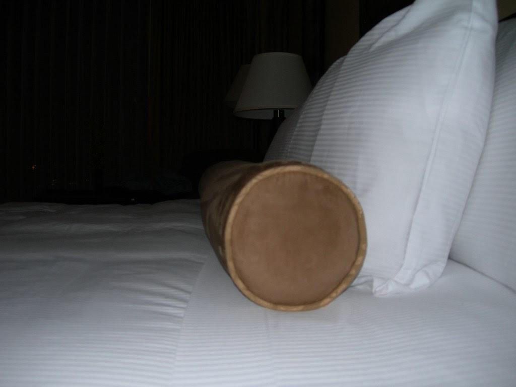 2007-11-07 Tube Pillow (1)
