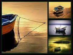 Love boats
