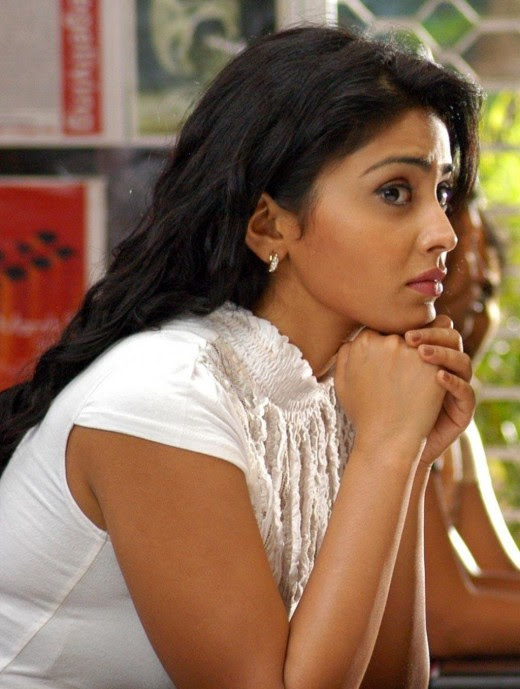 bollywood actress shriya saran photos and wallpapers