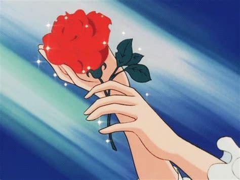 eine rose wurd immer eine rose bleiben ob sie wil order
