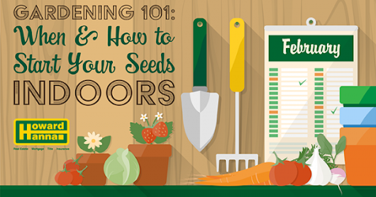 Gardening 101: When To Start Your Seeds Indoors