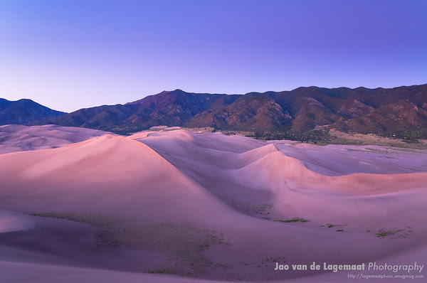 Purple dunes at dusk