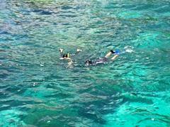 Snorkeling Fun at Raya Island