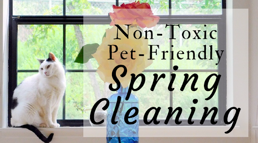 Non-Toxic Pet-Friendly Cleaning for Spring - Rascal and Rocco