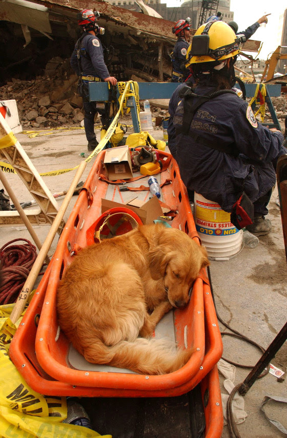 An exhausted Bretagne takes a break at Ground Zero in September 2001.