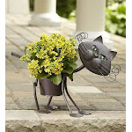 Flower Delivery by 1-800 Flowers My Pet Plant - Dog or Cat My Pet Plant - Cat