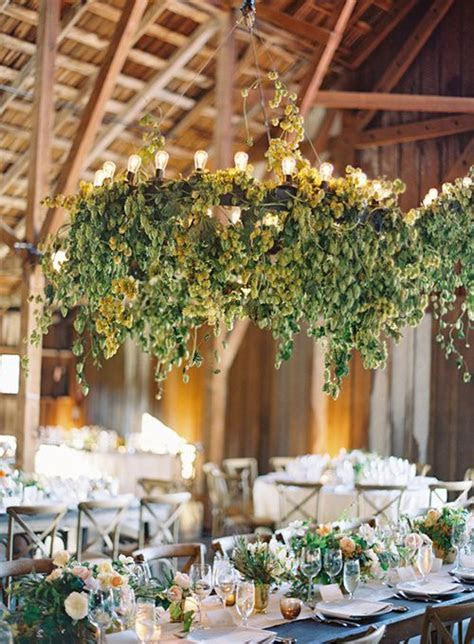 25  best ideas about Hops Wedding on Pinterest   Scabiosa