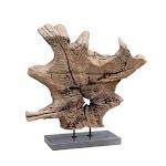 Moes Home Dax Natural Teak Sculpture