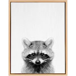 Kate and Laurel Sylvie Raccoon Black and White Portrait 18x24 Natural Framed Canvas Wall Art by Simon TE Tai