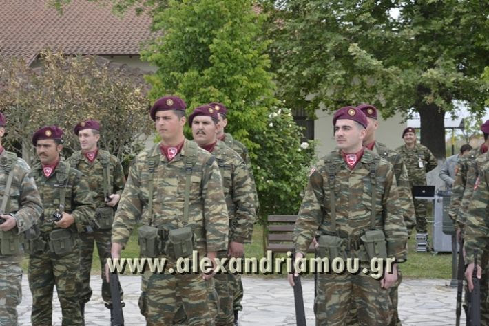 alexandriamou_SAS-TEAS_PARADOSI_DIOIKHSHS029