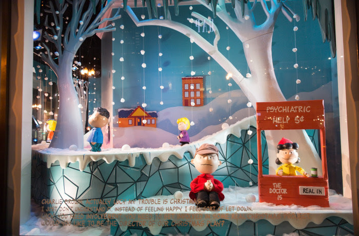 2015 Holiday Shopping Windows - Chicago, IL