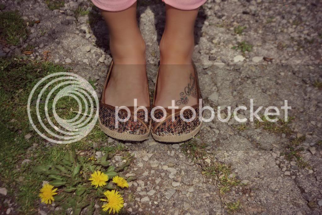 photo shoesgo_zps50cd8957.jpg