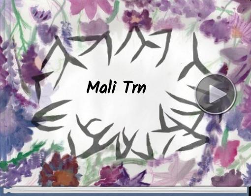 STORYJUMPER - MALI TRN (PRIMJER)