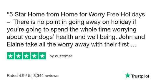 customer gave Barking Mad - Dog Home Boarding | Dog Sitting | Pet Care 5 stars. Check out the full review...