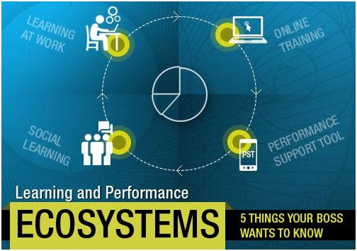 Learning And Performance Ecosystems: 5 Things Your Boss Wants To Know - EIDesign