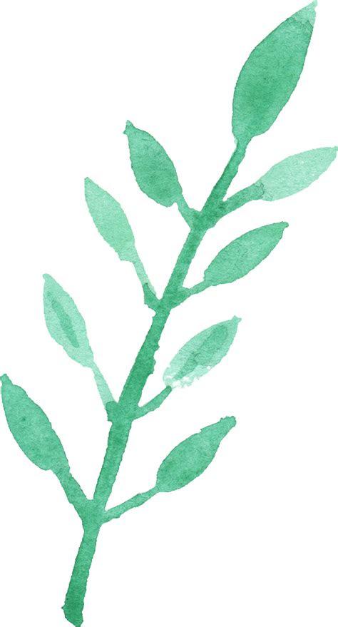 watercolor leaf png transparent vol  onlygfxcom