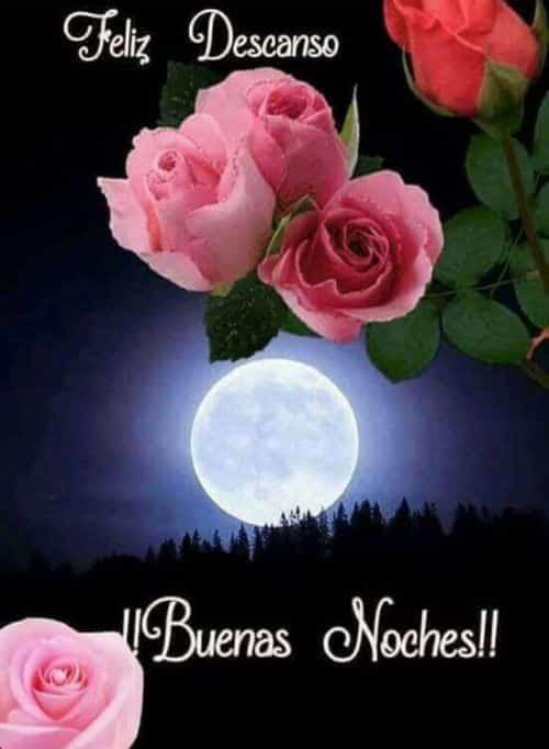 107 Frases De Buenas Noches Para Compartir Con Mensajes Para Dedicar