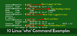 10 'who' Command Examples for Linux Newbies