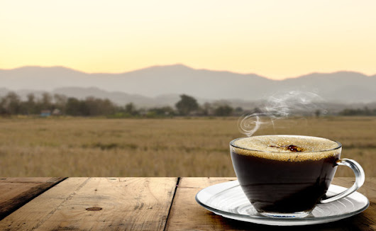 How To Transform Your Coffee Into A Serious Brain Booster | Care2 Healthy Living