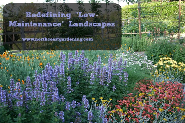 Redefining Low Maintenance Landscapes North Coast Gardening