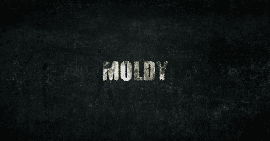 Watch Moldy: The New Documentary About Toxic Mold