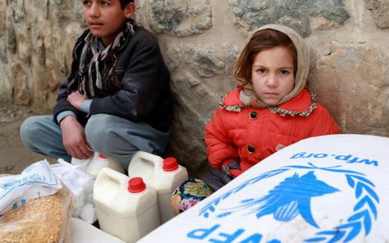 Des famines qui feront 20 millions de morts si rien n'est fait