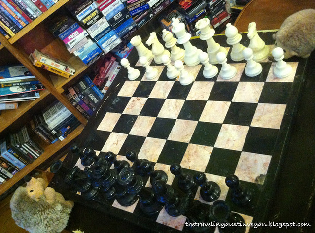 IMG_4138 Hedgehogs Play Chess 2