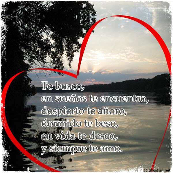 Imagen Para Facebook Con Frases De Amor Te Busco En Suenos Te
