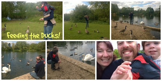 Ducks, Steam Trains and Boats!