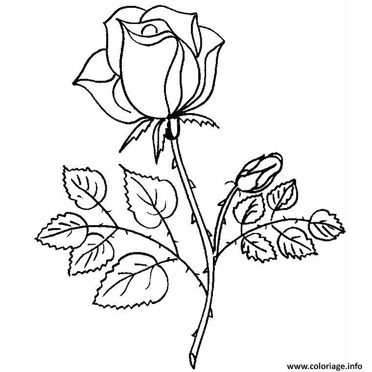 Coloriage Belle Rose Amour Jecoloriecom