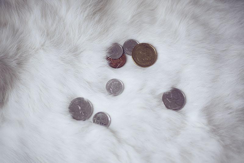 prepper blog preparedness tips save money while prepping
