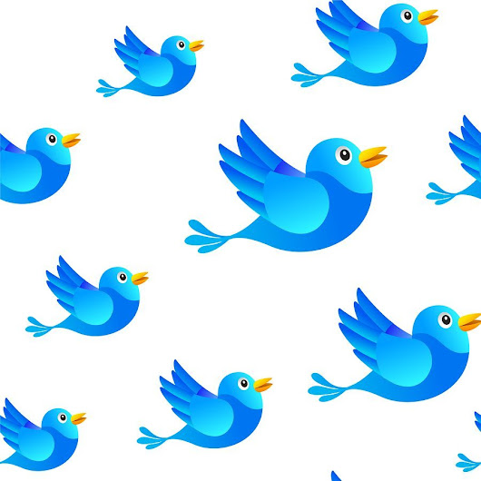 9 Types of Twitter Follower - and How to Treat Them