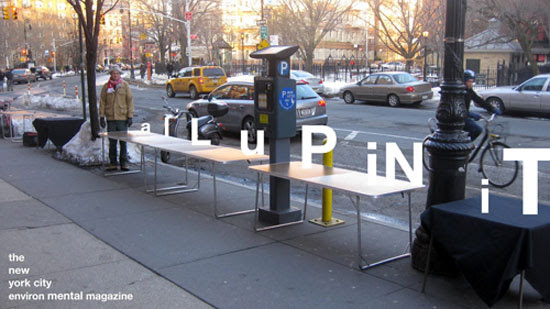 aLuPiNiT street vendor table, NYC.