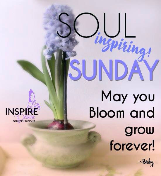 Soul Inspiring Sunday Pictures Photos And Images For Facebook