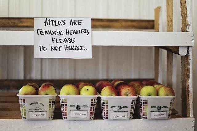 Kilmarnock Orchard