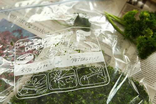 parsley to freeze