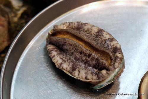 abalone-korea.jpg