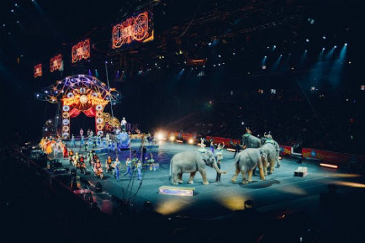 9 Little Stories from a PR Stint with the Ringling Bros. and Barnum & Bailey Circus